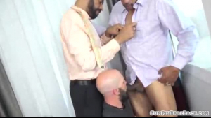 Two sexy brown bears sucked and fucked by the hunk